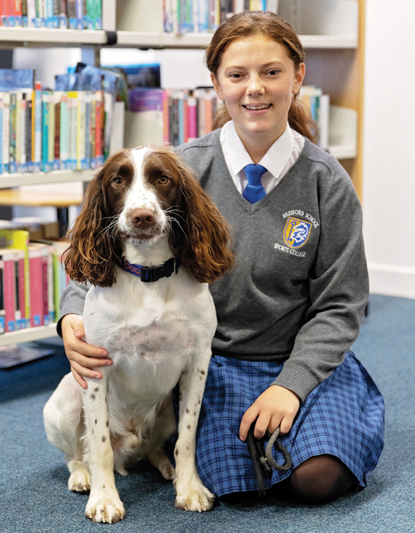 The benefits of a school dog with a student